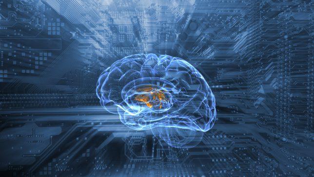 Machine Learning ist überall: Von Empfehlungssystemen, Spamfiltern über Personal Assistants bis zur Gesichtserkennung.