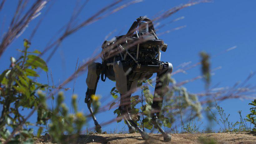 Spot, einer der Boston-Dynamics-Roboter. © Boston Dynamics