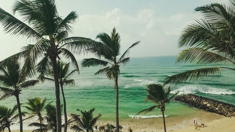 Reisedestination Sri Lanka. © WeDesignTrips