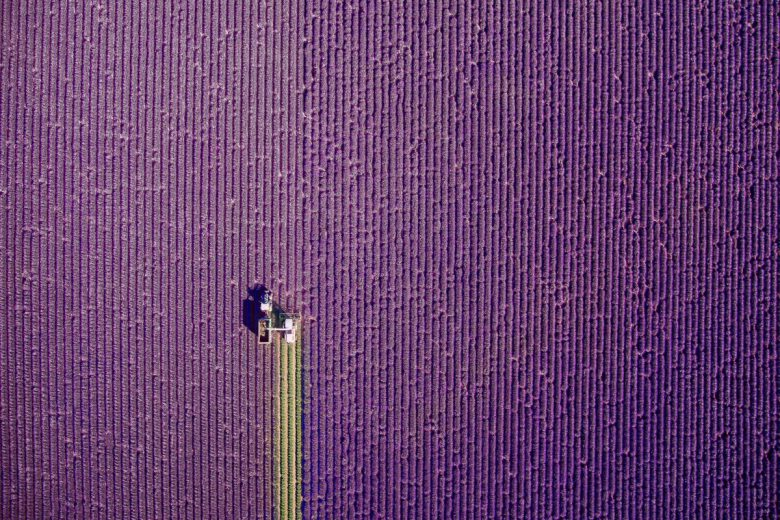 "1. Platz Kategorie ""Nature"". © jcourtial/Dronestagram"
