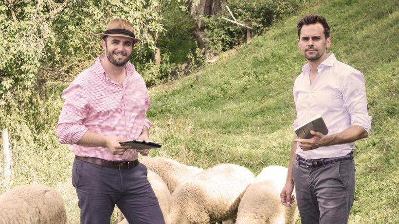 Eduard Rameder und Reinhard Falschlehner (v.l.n.r.) haben Sheepblue gegründet. © Rudolf Schmied