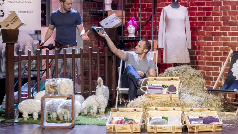 Shared Sheep bei 2 Minuten 2 Millionen © Gerry Frank
