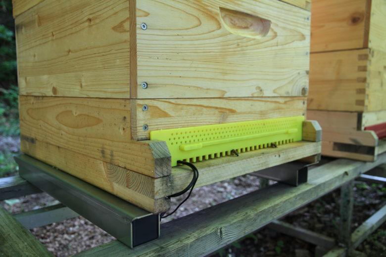 Die Bienenstockwaage von Beesaver. © Beesaver