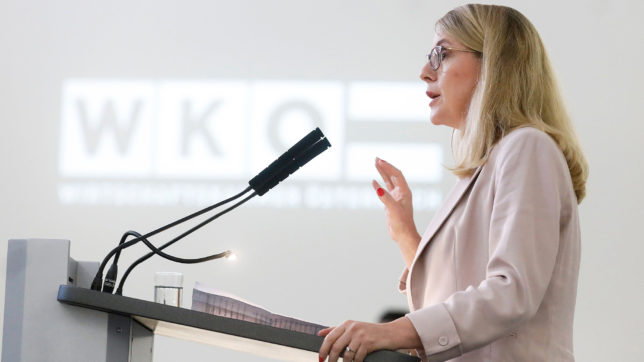 Bundesministerin Margarete Schramböck. © Dragan Tatic/BKA