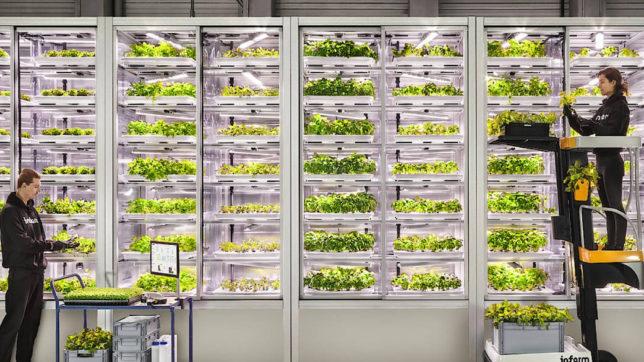 Vertikale Indoor-Farmen von Infarm. © Infarm