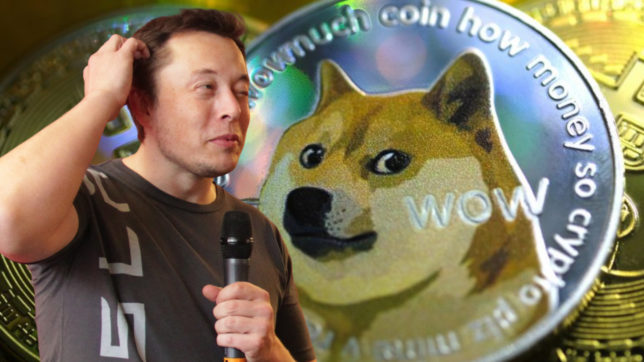 Elon Musk & Dogecoin. © Reddit / Tesla Owners Club Belgium (CC BY 2.0)