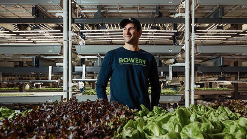 Bowery Farming-Gründer Irving Fain © Bowery Farming