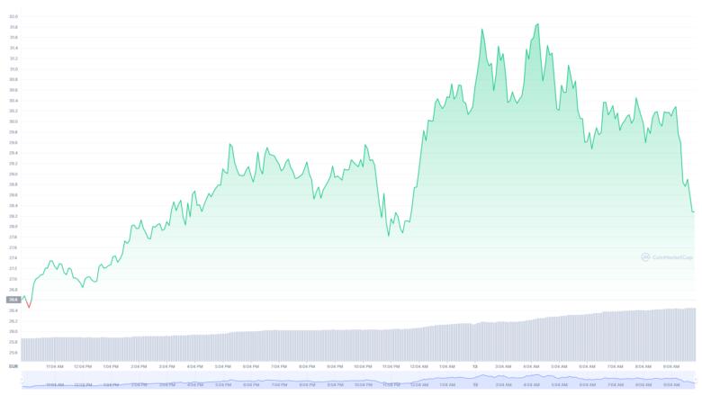 Der Polkadot-Chart der letzten24 Stunden. © CoinMarketCap